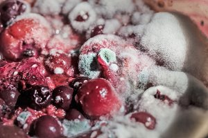 Multi colors berries in mold