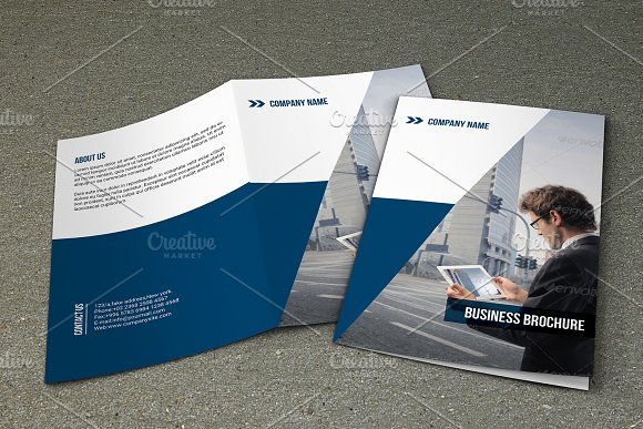 Bifold Business Brochure V780