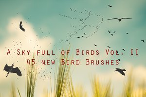 Bird Brushes Vol II