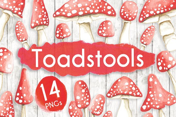 Watercolour Toadstools Mushrooms