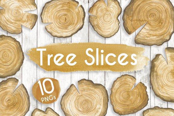 Watercolour Tree Slices