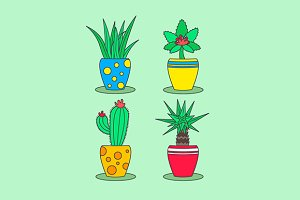 Set of plants in pots