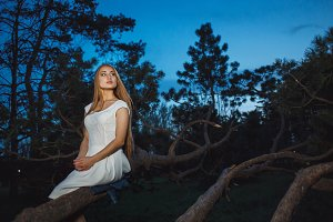 Beautiful Blonde Girl Sitting on Old Tree Branch in Mystical Fairy Night forest.