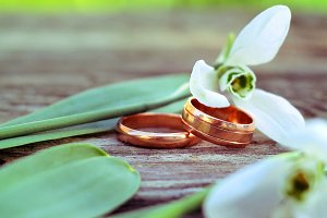 Wedding rings and snowdrops
