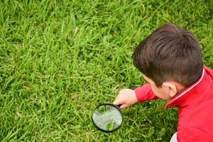 little boy with a magnifying glass