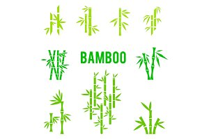 Bamboo stalks and leaves vector icons.