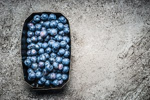 Blueberries in paper box