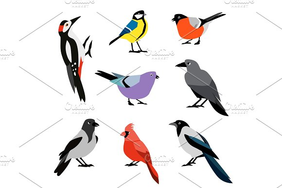 Set of winter birds. Flat design vector birds icon set.