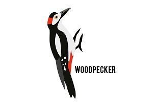 Great Spotted Woodpecker. Winter bird in a flat style. Forest animal.
