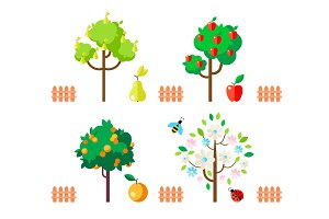 Fruit trees apple, pear, orange, flowering tree.