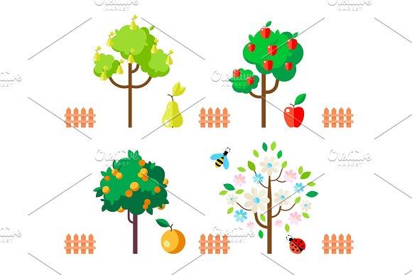 Fruit trees apple, pear, orange, flowering tree.