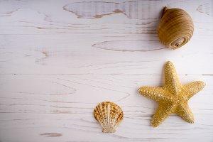 Yellow seastar on wooden desk.