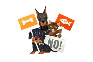 No bullying of animals, protesting cats and dogs with boards