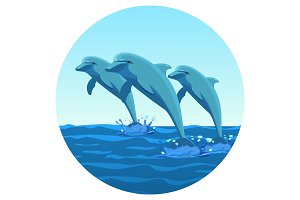 Three dolphins synchronously jump out of water friendly kind creatures