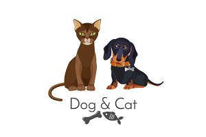 Dog and cat of pure breed promotional poster