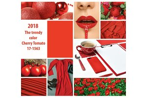 Trendy color concept. Set with red color