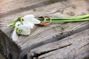 Wedding rings and flowers snowdrops