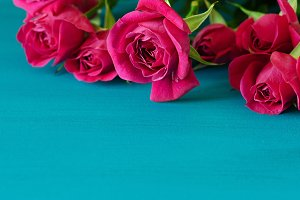 Red roses on blue wooden background.