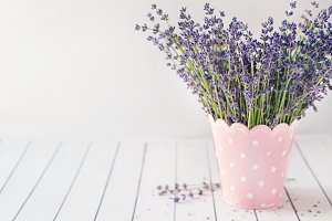 Bouquet of lavender in a vase. Prove