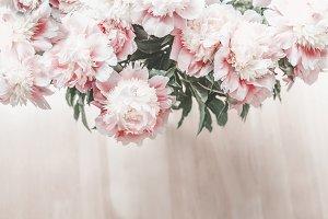 Glorious pastel bouquet of peonies