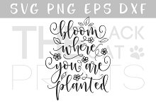 Bloom where you are planted SVG DXF