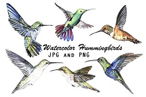 Watercolor Hummingbirds