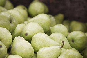 fresh picked pears