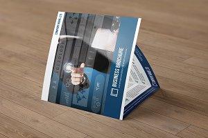 Trifold Business Brochure V782