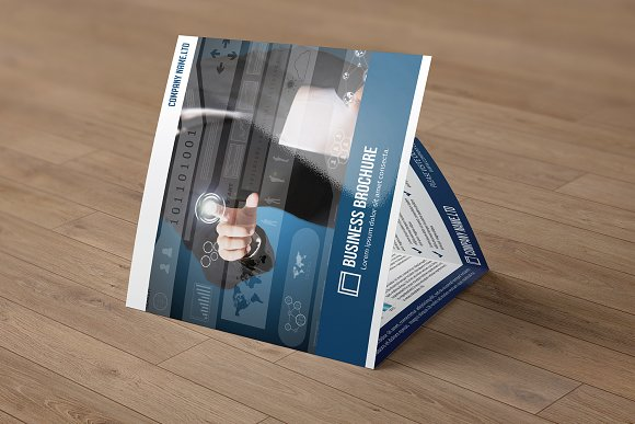 Trifold Business Brochure V782