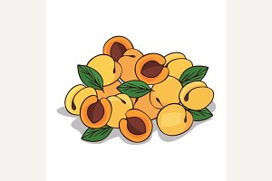 Isolate ripe apricot fruit
