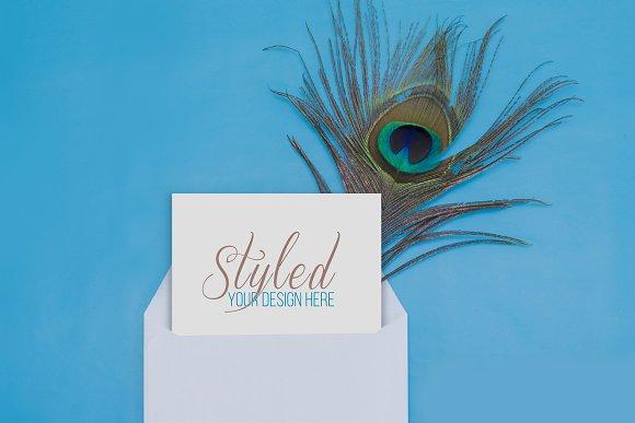 Styled Stock Photo Peacock Invite