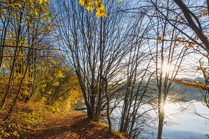 Autumn colors by the lake