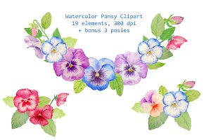 Hand Drawn Watercolor Pansy Clipart