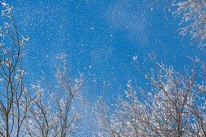 Blue winter clear sky