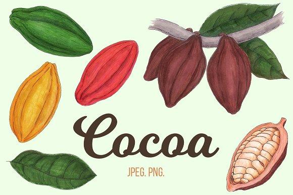 Сartoon cocoa
