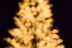 Chrestmas tree bokeh