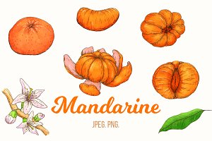 Hand drawn cartoon mandarine