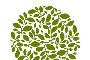 Backgrounds of leaves.