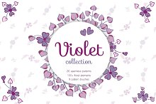 Big Violet Collection