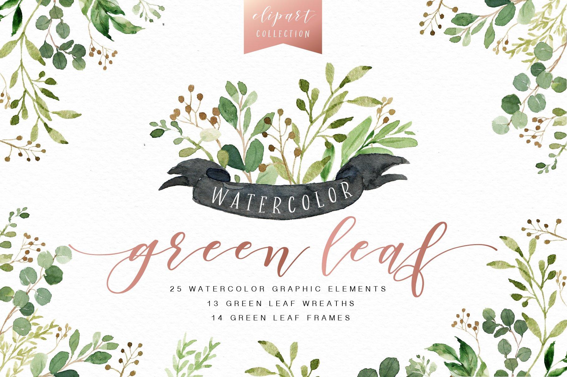 Watercolor Green Leaf Clip Art Illustrations Creative
