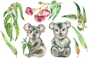 Watercolor Eucalyptus and Koala set.