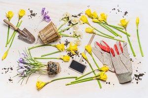 Spring gardening flat lay