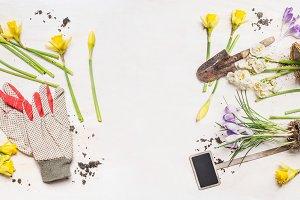 Springtime gardening frame