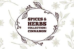 Spices & Herbs: Cinnamon