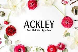 Ackley Sans Serif 7 Font Family