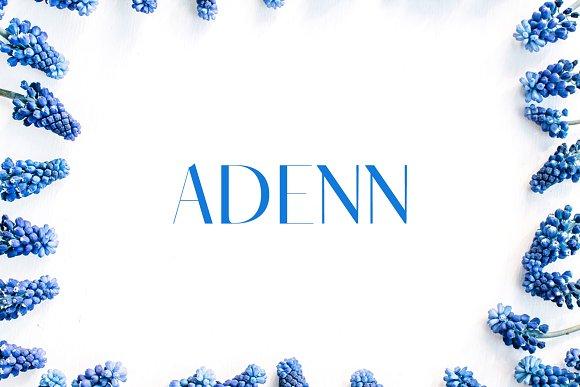 Adenn Sans Serif 4 Font Family Pack
