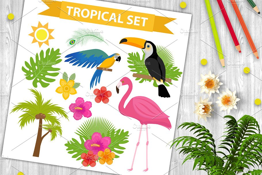 Tropical icon set with birds and flowers, flat, cartoon style. Exotic collection of design elements with toucan, parrot, plant, flamingo, flower. Paradise objects. Vector illustration