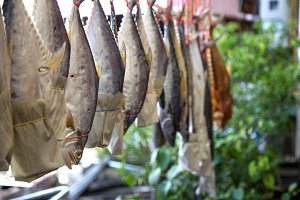 dried fish hanging on a rope, a life and business fisherman