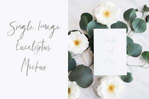 Eucalyptus Wedding Mockup Image