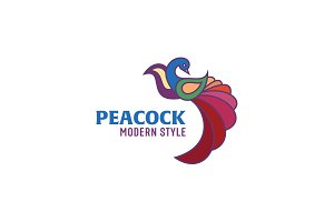 Peacock colored birds illustration of a modern design, high quality performance for your brand logo style flat